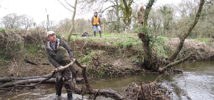 Our thanks go to all those members who helped with bank clearing this Spring